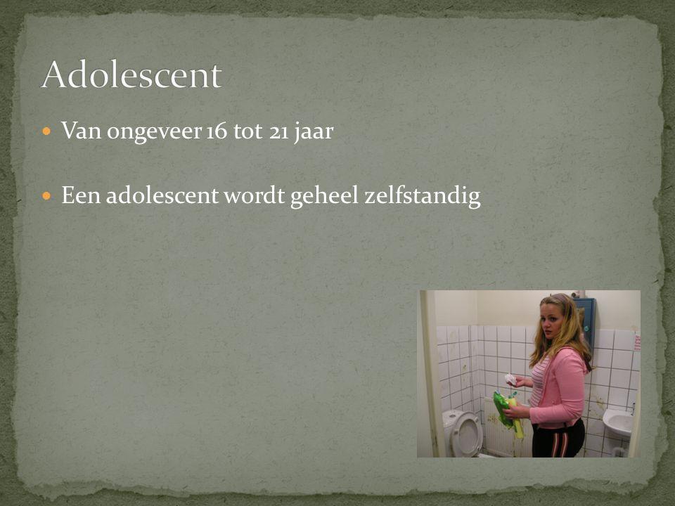 Van ongeveer 16 tot 21 jaar Een adolescent wordt geheel zelfstandig
