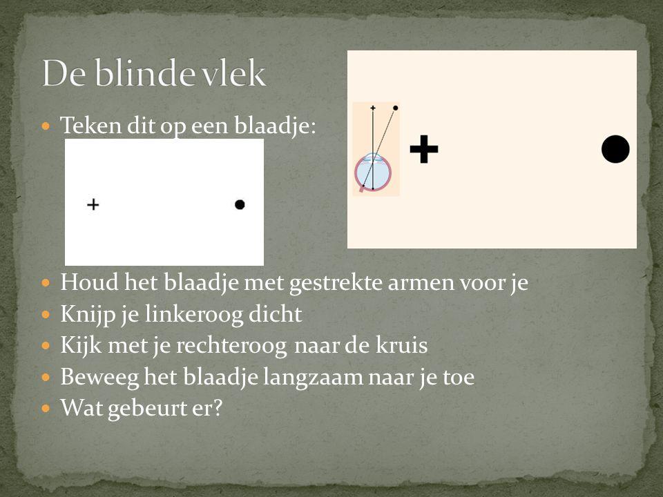 Teken dit op een blaadje: Houd het blaadje met gestrekte armen voor je Knijp je linkeroog dicht Kijk met je rechteroog naar de kruis Beweeg het blaadj