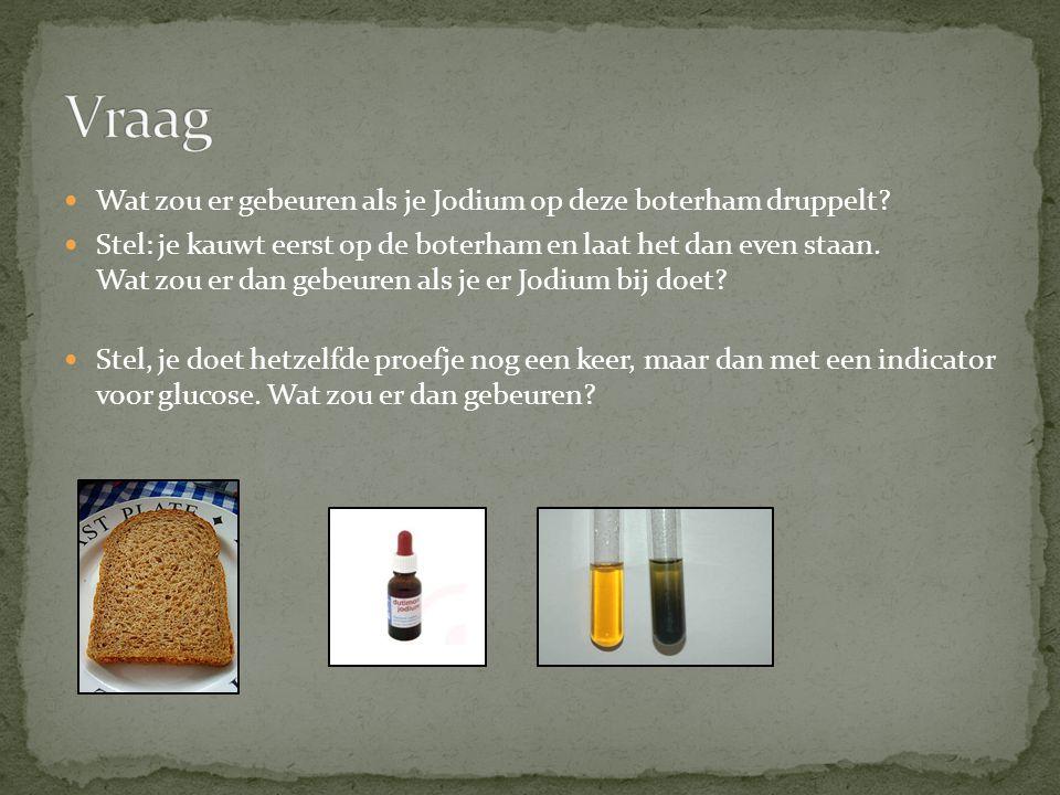 Wat zou er gebeuren als je Jodium op deze boterham druppelt? Stel: je kauwt eerst op de boterham en laat het dan even staan. Wat zou er dan gebeuren a