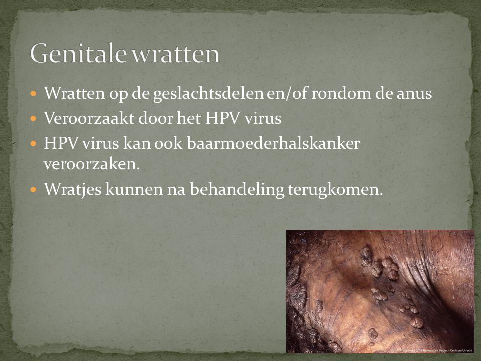 Wordt veroorzaakt door een Herpes virus.