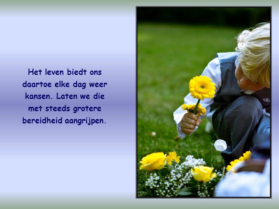 De liefde moet altijd groeien. En dat gebeurt als we haar actief beoefenen en in daden omzetten.