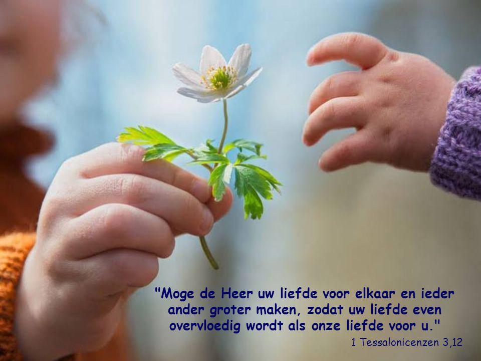 Het is de liefde eigen voor iedere persoon zijn hart open te stellen, bruggen te slaan, het positieve te waarderen, en samen met allen die van goede w