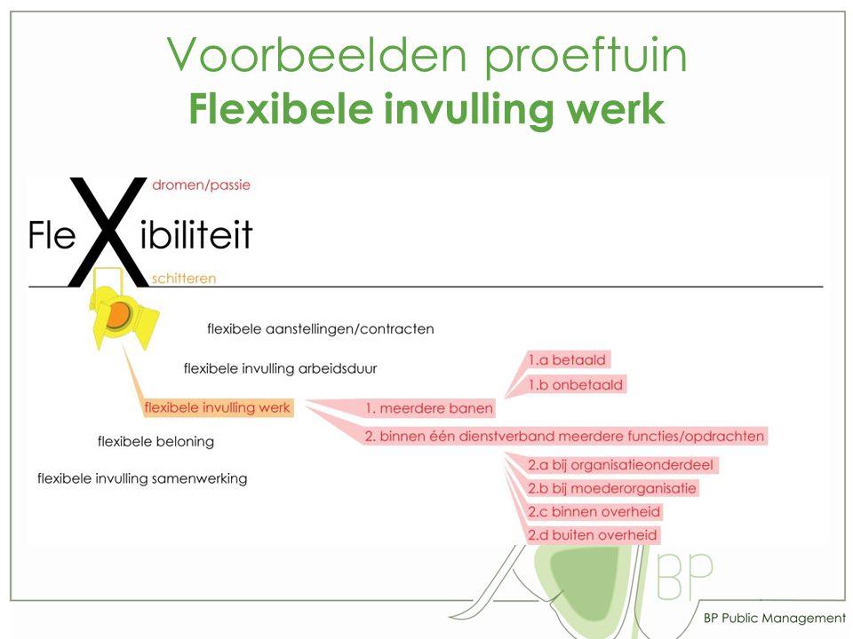 Voorbeelden proeftuin Flexibele invulling werk