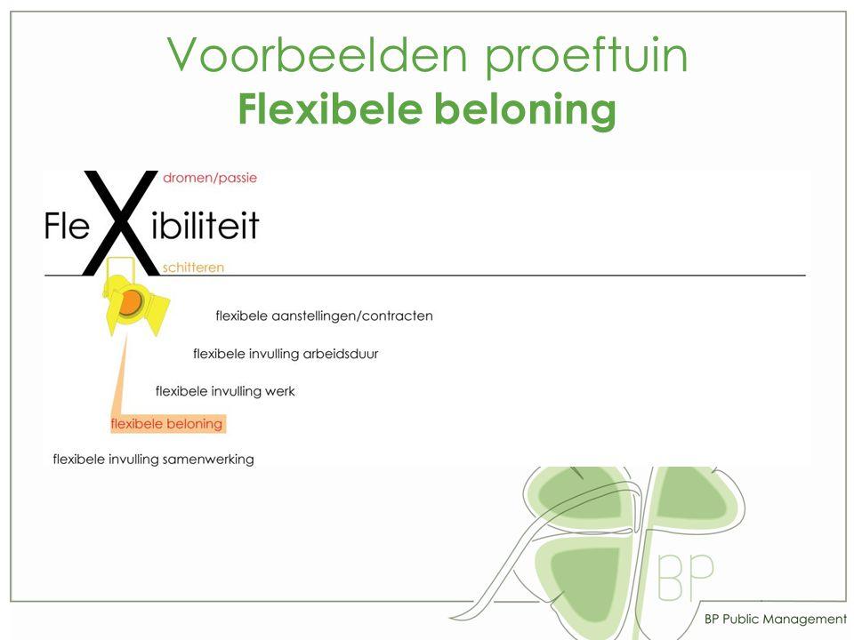 Voorbeelden proeftuin Flexibele beloning