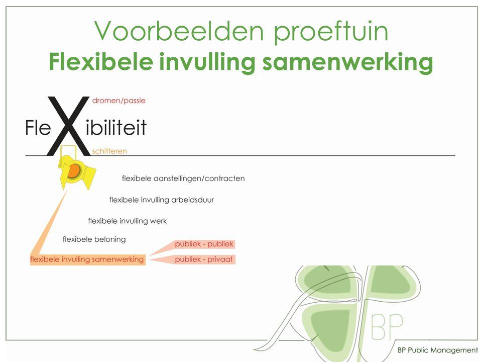 Voorbeelden proeftuin Flexibele invulling samenwerking