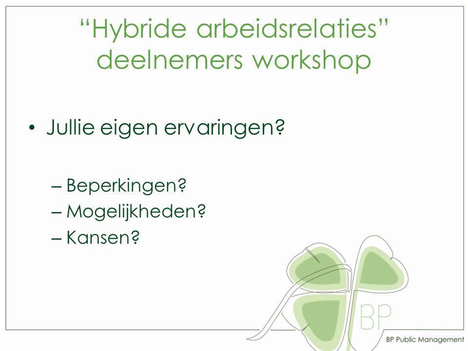 Hybride arbeidsrelaties deelnemers workshop Jullie eigen ervaringen.