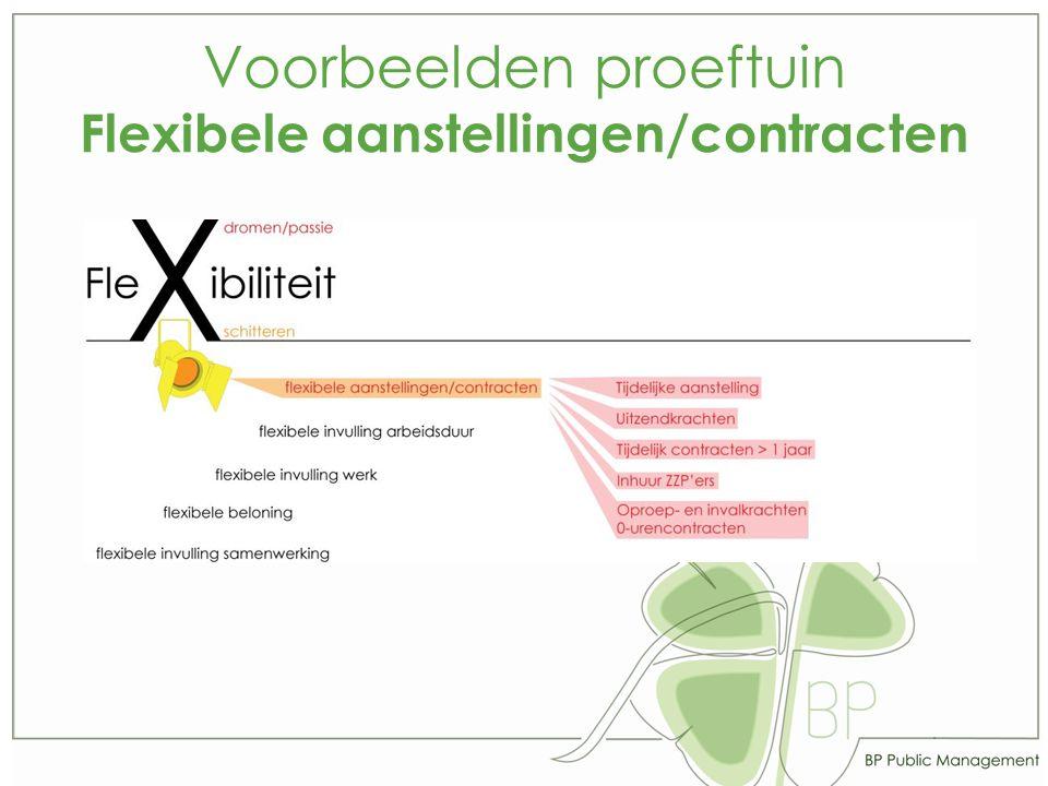 Voorbeelden proeftuin Flexibele aanstellingen/contracten