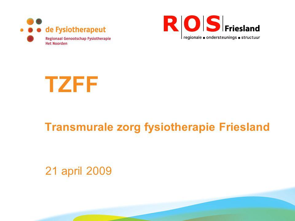 TZFF Transmurale zorg fysiotherapie Friesland 21 april 2009