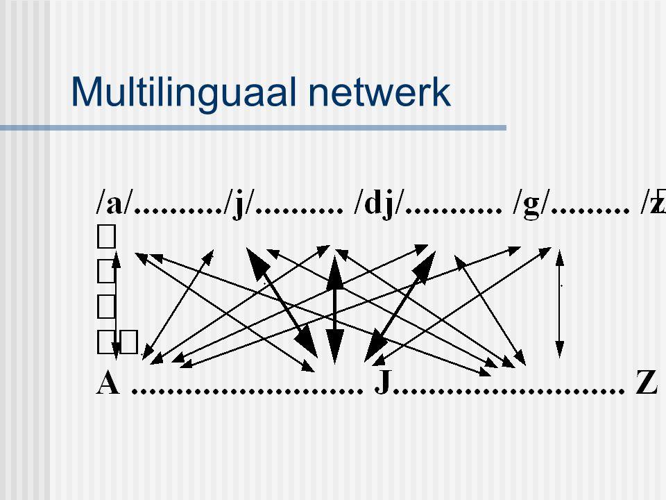 Multilinguaal netwerk