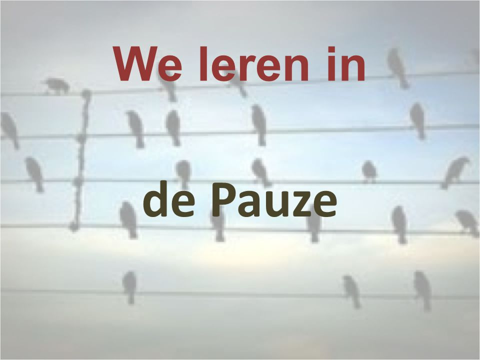 We leren in de Pauze