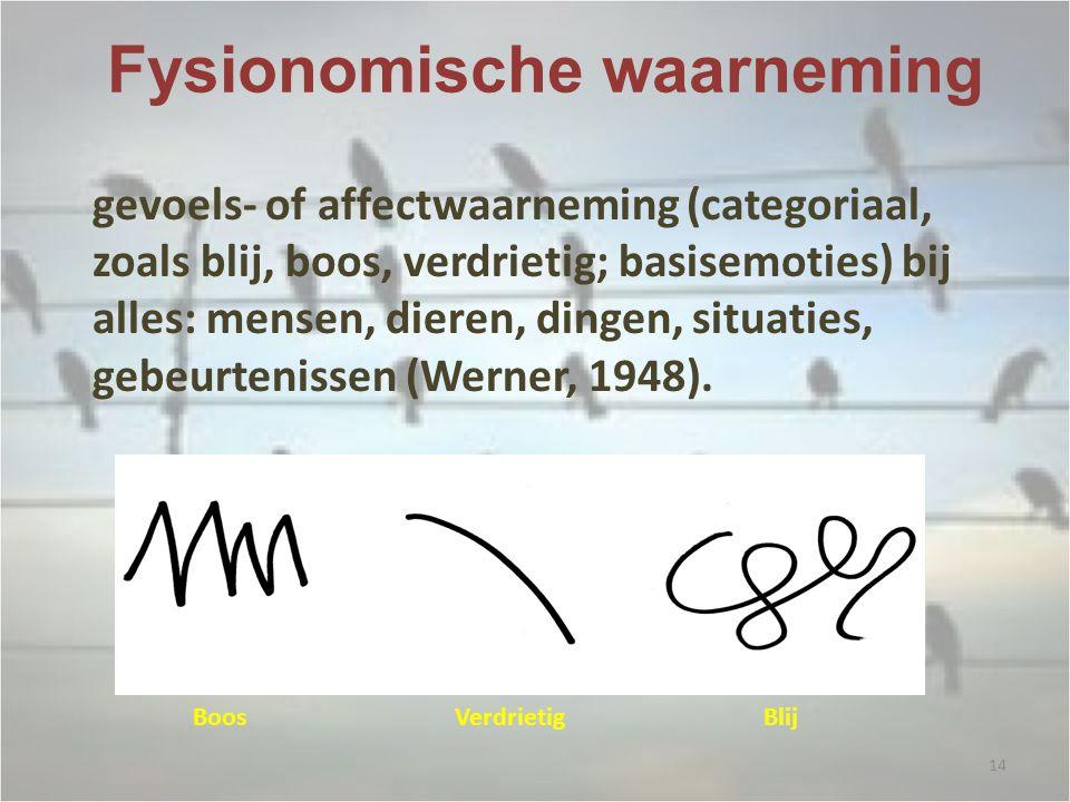 Fysionomische waarneming gevoels- of affectwaarneming (categoriaal, zoals blij, boos, verdrietig; basisemoties) bij alles: mensen, dieren, dingen, situaties, gebeurtenissen (Werner, 1948).