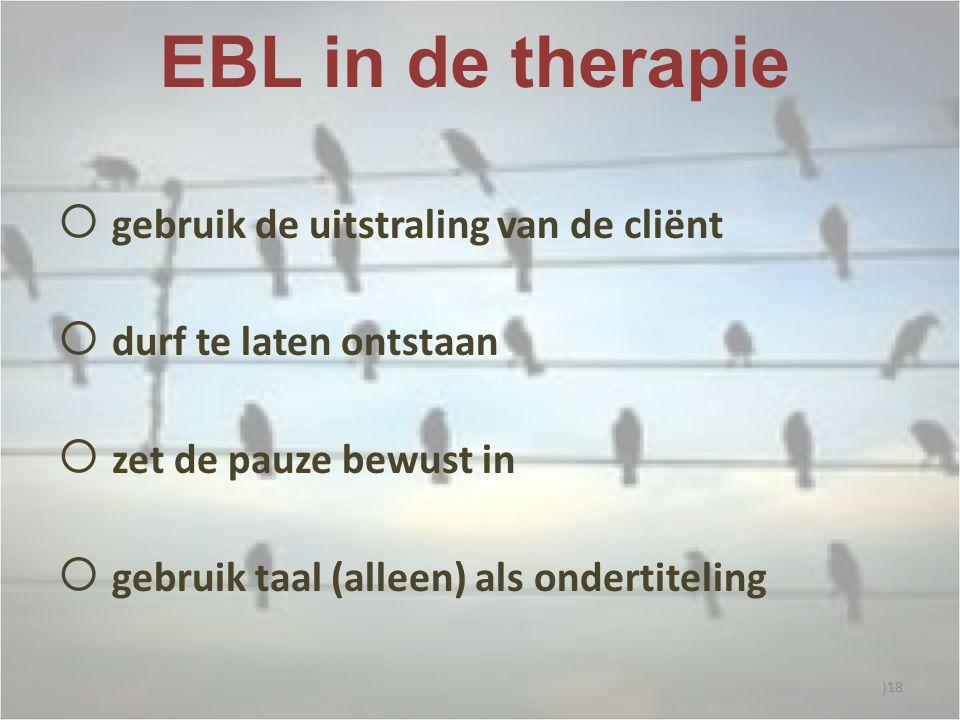 EBL in de therapie  gebruik de uitstraling van de cliënt  durf te laten ontstaan  zet de pauze bewust in  gebruik taal (alleen) als ondertiteling )18