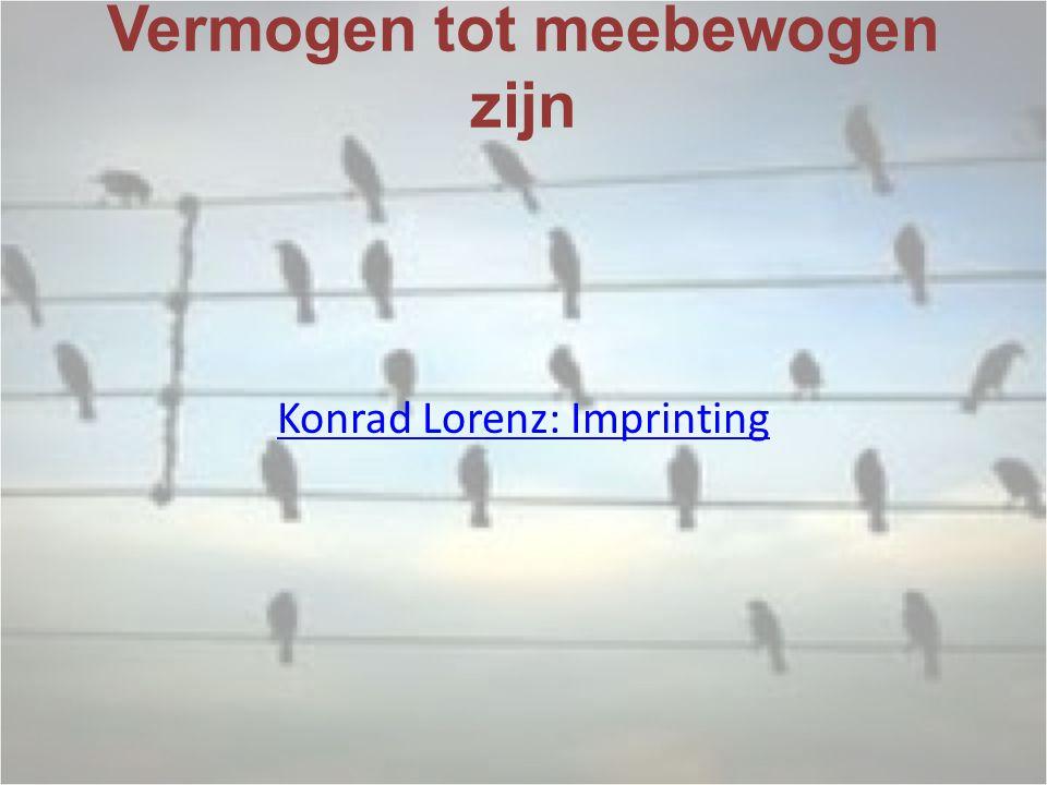 Vermogen tot meebewogen zijn Konrad Lorenz: Imprinting