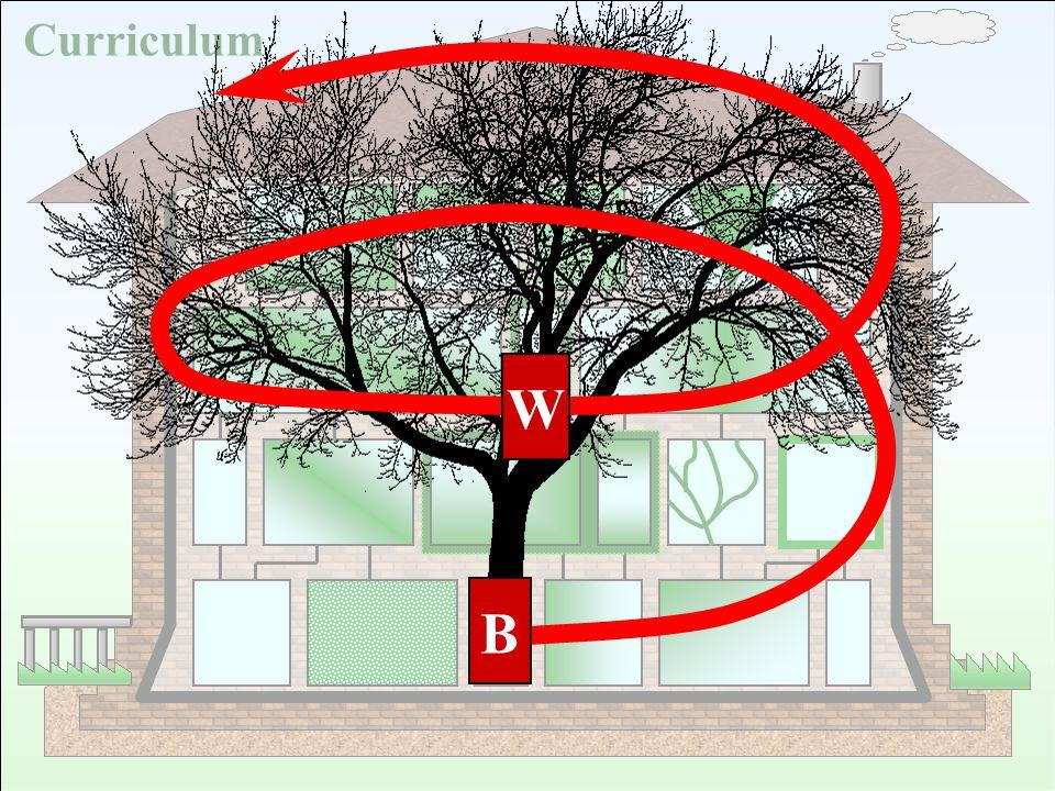 B Curriculum B W