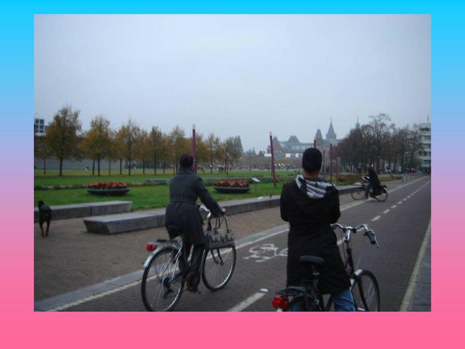 Expositie basistraining 2 uitgewerkte stedenbouwkundige plannen Presentatie aan vakjury m.b.v.