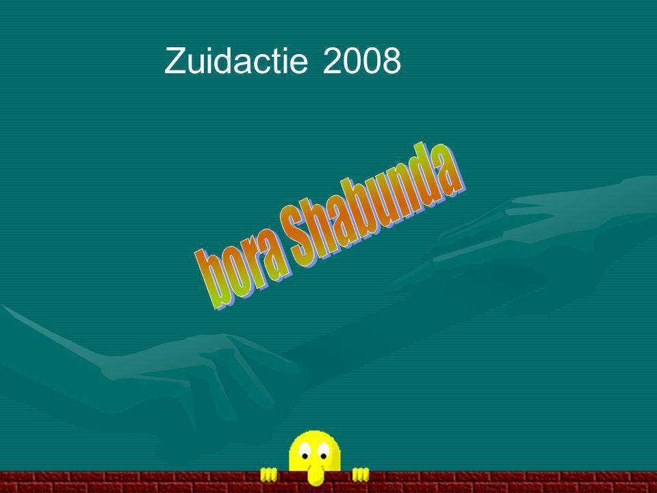 Zuidactie 2008