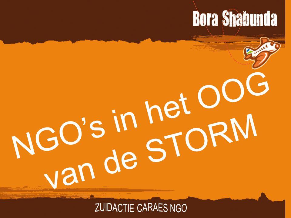 NGO's in het OOG van de STORM