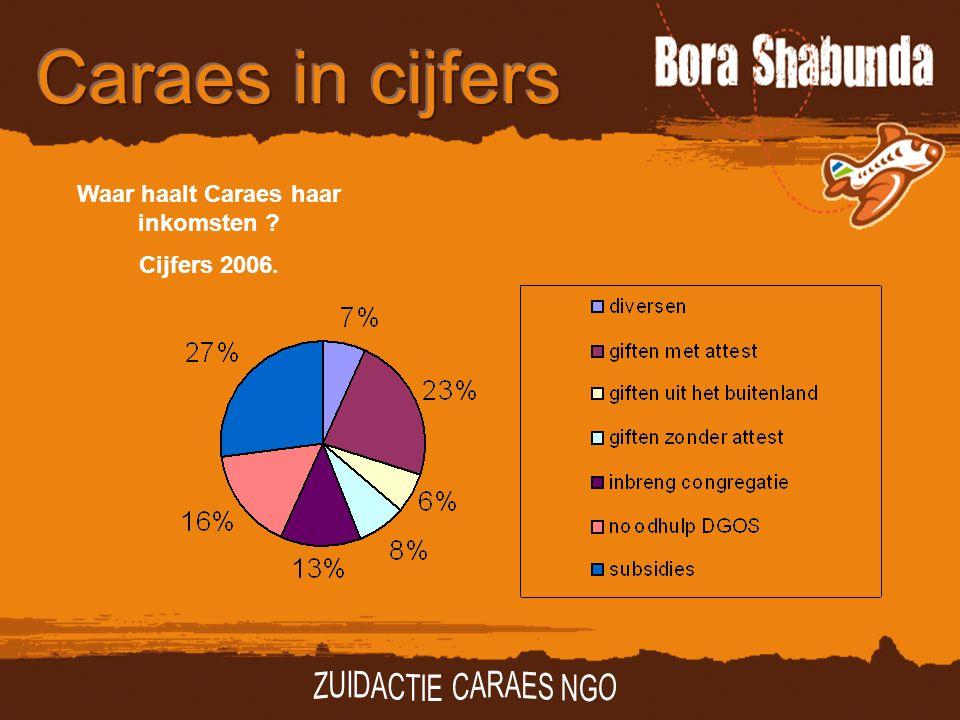 Waar haalt Caraes haar inkomsten ? Cijfers 2006.