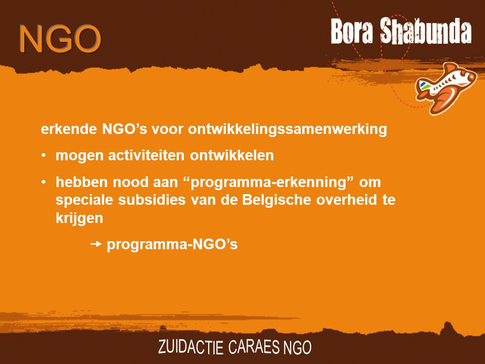 erkende NGO's voor ontwikkelingssamenwerking mogen activiteiten ontwikkelen hebben nood aan programma-erkenning om speciale subsidies van de Belgische overheid te krijgen  programma-NGO's