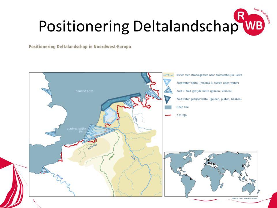 Positionering Deltalandschap