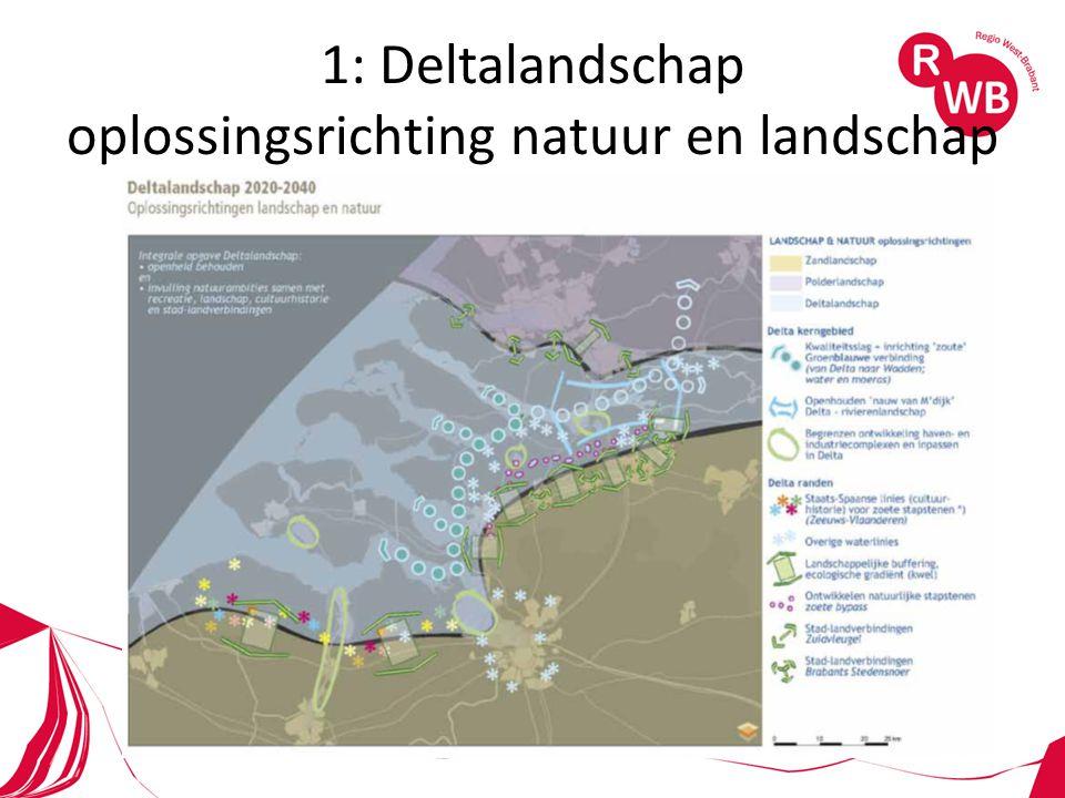 1: Deltalandschap oplossingsrichting natuur en landschap
