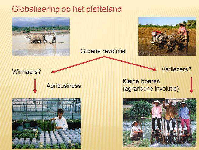 Groene revolutie Winnaars? Agribusiness Verliezers? Kleine boeren (agrarische involutie) Globalisering op het platteland