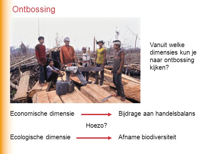 Vanuit welke dimensies kun je naar ontbossing kijken? Economische dimensie Ecologische dimensie Hoezo? Bijdrage aan handelsbalans Afname biodiversitei