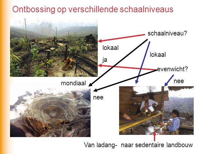 schaalniveau? lokaal evenwicht? ja Van ladang- naar sedentaire landbouw nee mondiaal nee lokaal Ontbossing op verschillende schaalniveaus