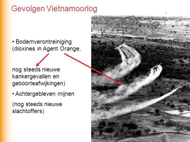 Bodemverontreiniging (dioxines in Agent Orange, nog steeds nieuwe kankergevallen en geboorteafwijkingen) Achtergebleven mijnen (nog steeds nieuwe slac