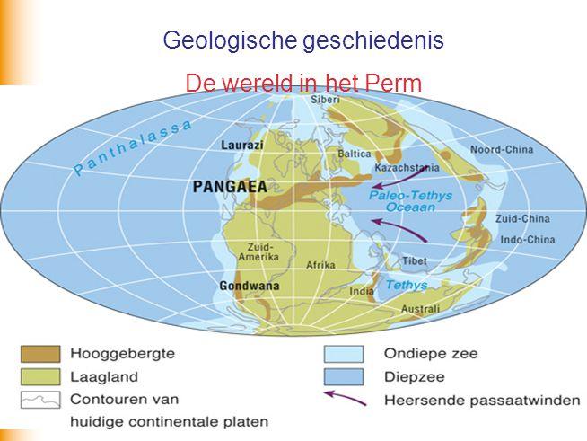 Geologische geschiedenis De wereld in het Perm