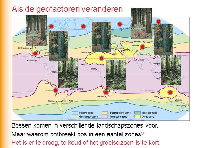 Bossen komen in verschillende landschapszones voor. Maar waarom ontbreekt bos in een aantal zones? Het is er te droog, te koud of het groeiseizoen is