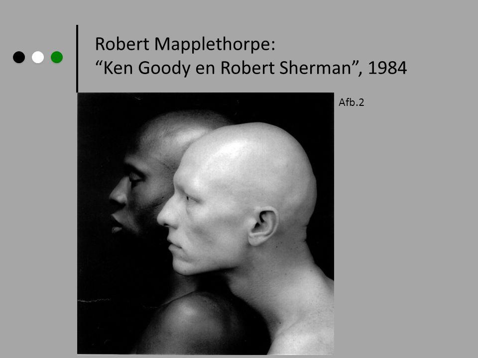 De foto's van Robert Mapplethorpe, waarin hoofdzakelijk homoseksuele mannen figureren riepen bij een groot publiek weerstanden op.