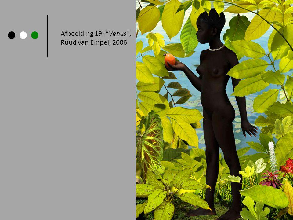 """Afbeelding 19: """"Venus"""", Ruud van Empel, 2006"""