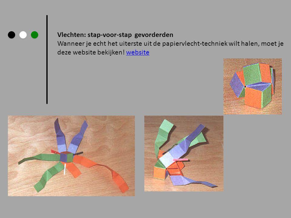 Vlechten: stap-voor-stap gevorderden Wanneer je echt het uiterste uit de papiervlecht-techniek wilt halen, moet je deze website bekijken! websitewebsi