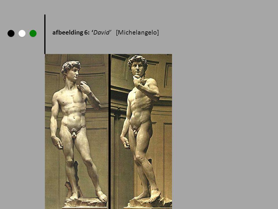 afbeelding 6: 'David' [Michelangelo]