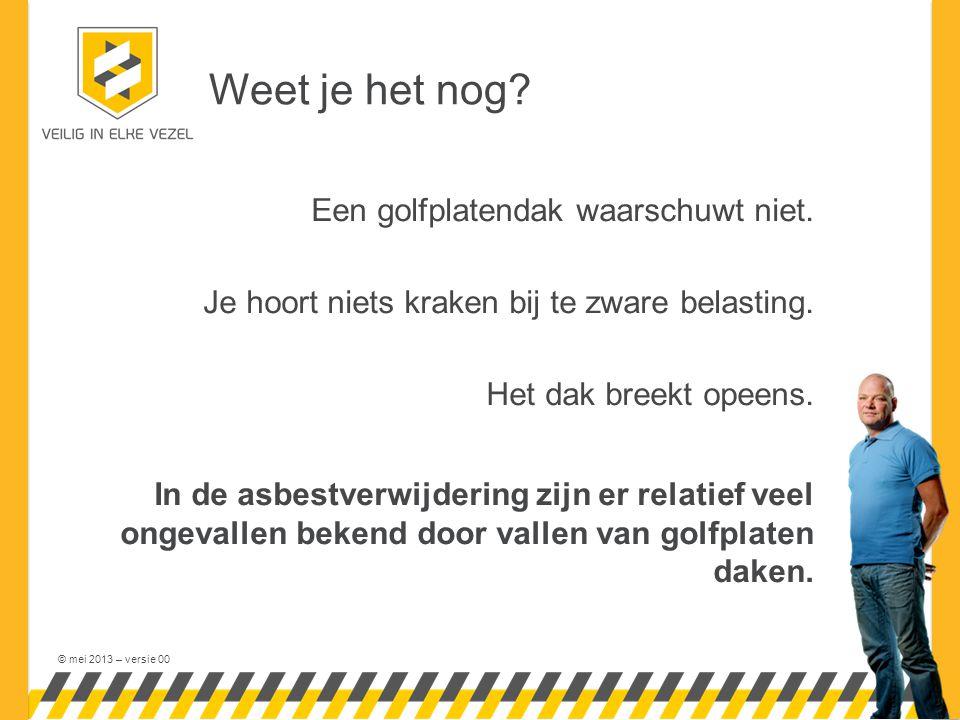 © mei 2013 – versie 00 Weet je het nog. Een golfplatendak waarschuwt niet.
