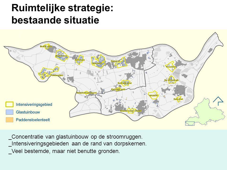 Ruimtelijke strategie: bestaande situatie _Concentratie van glastuinbouw op de stroomruggen. _Intensiveringsgebieden aan de rand van dorpskernen. _Vee
