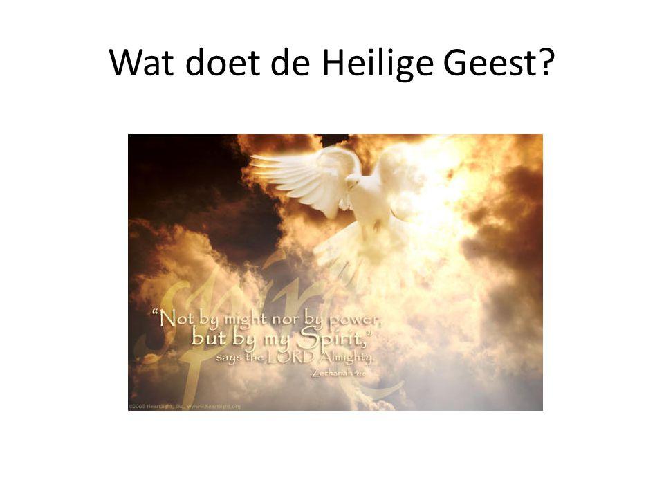 Wat doet de Heilige Geest?