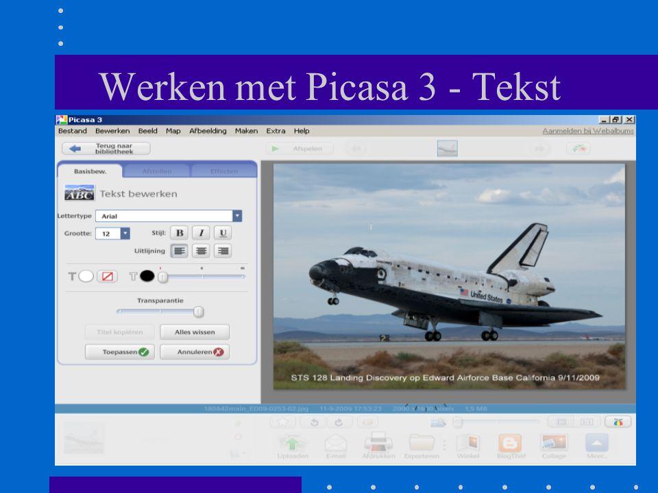 Werken met Picasa 3 - Tekst