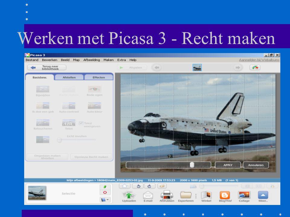 Werken met Picasa 3 - Recht maken