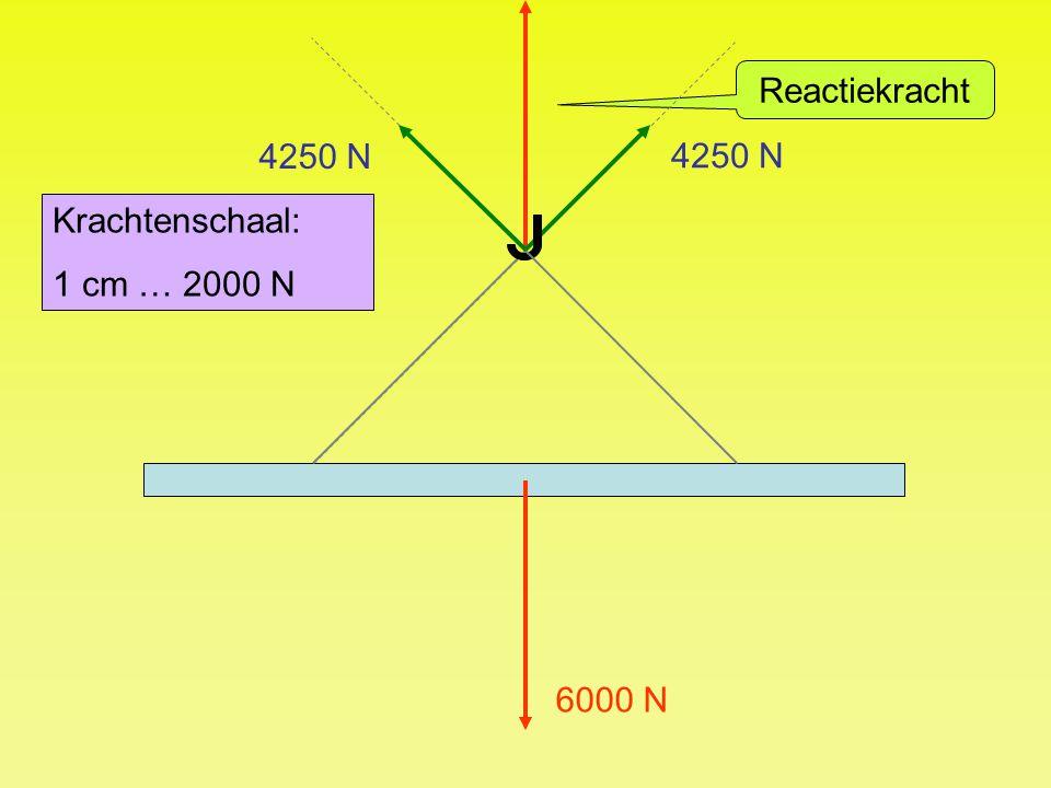 6000 N Krachtenschaal: 1 cm … 2000 N 4250 N Reactiekracht