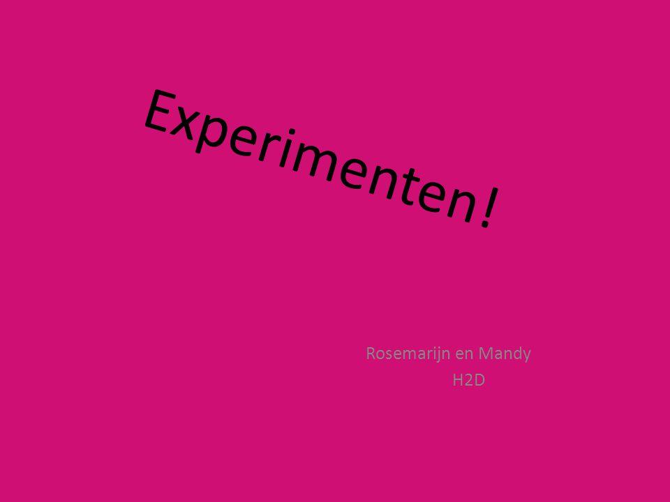 Experimenten! Rosemarijn en Mandy H2D