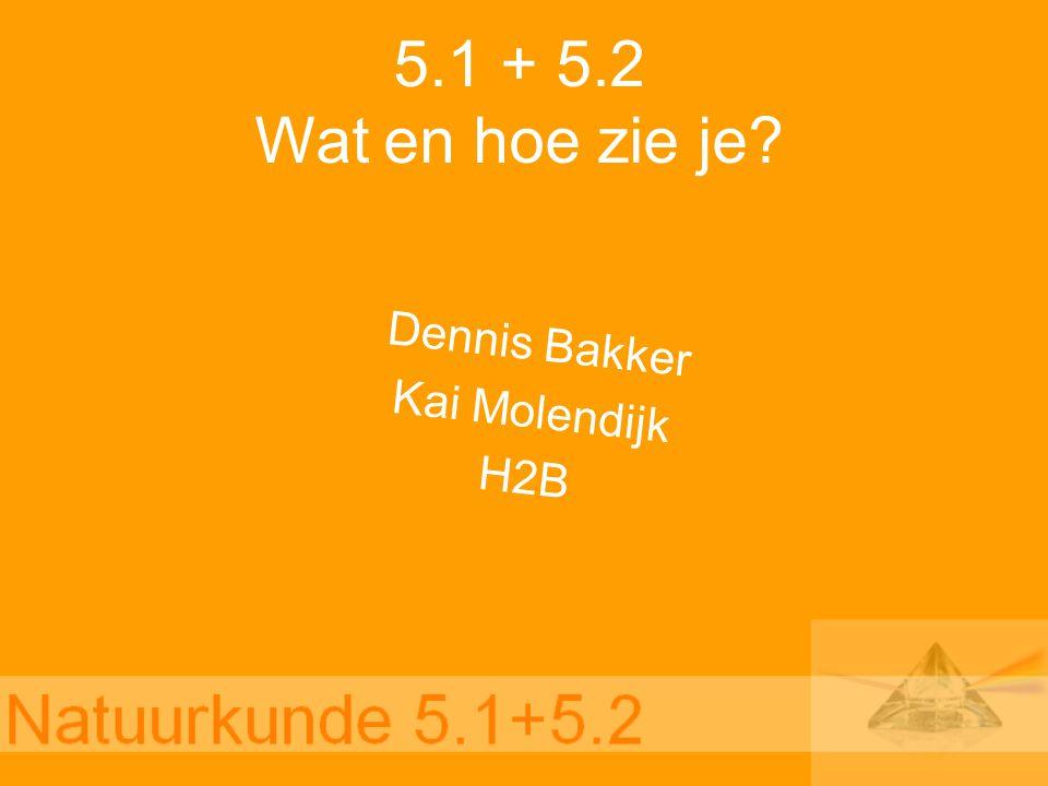 5.1 + 5.2 Wat en hoe zie je? Dennis Bakker Kai Molendijk H2B