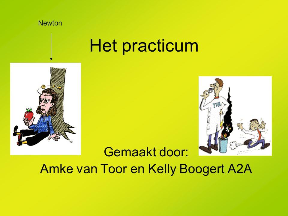 Het practicum Gemaakt door: Amke van Toor en Kelly Boogert A2A Newton