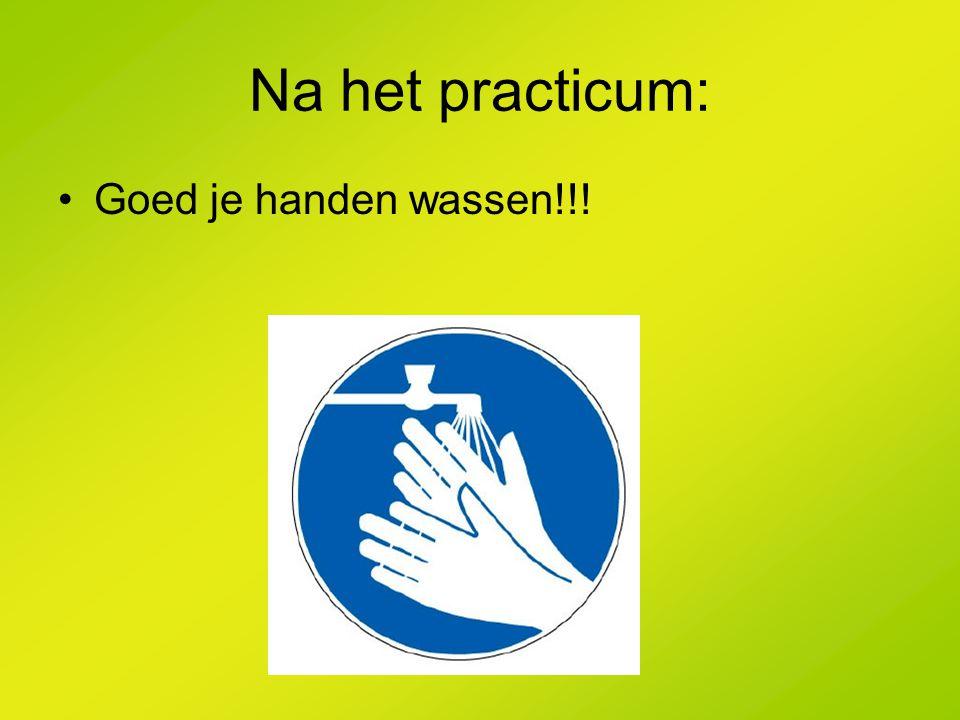 Na het practicum: Goed je handen wassen!!!