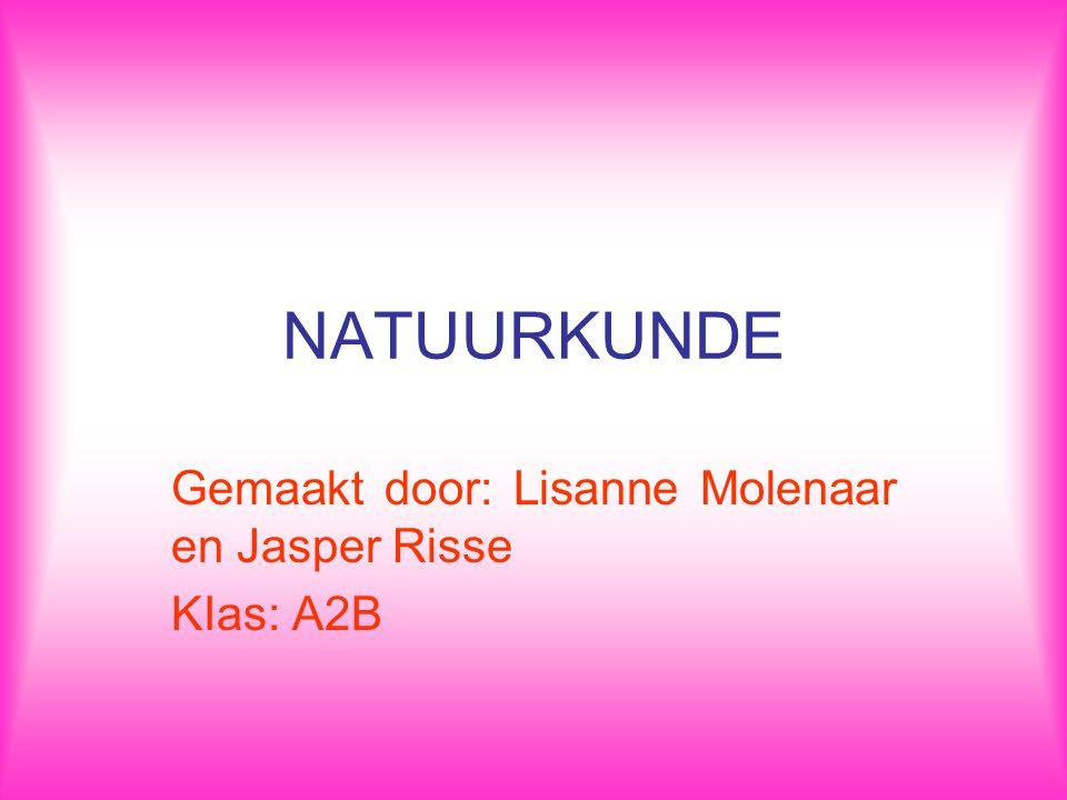 NATUURKUNDE Gemaakt door: Lisanne Molenaar en Jasper Risse KIas: A2B