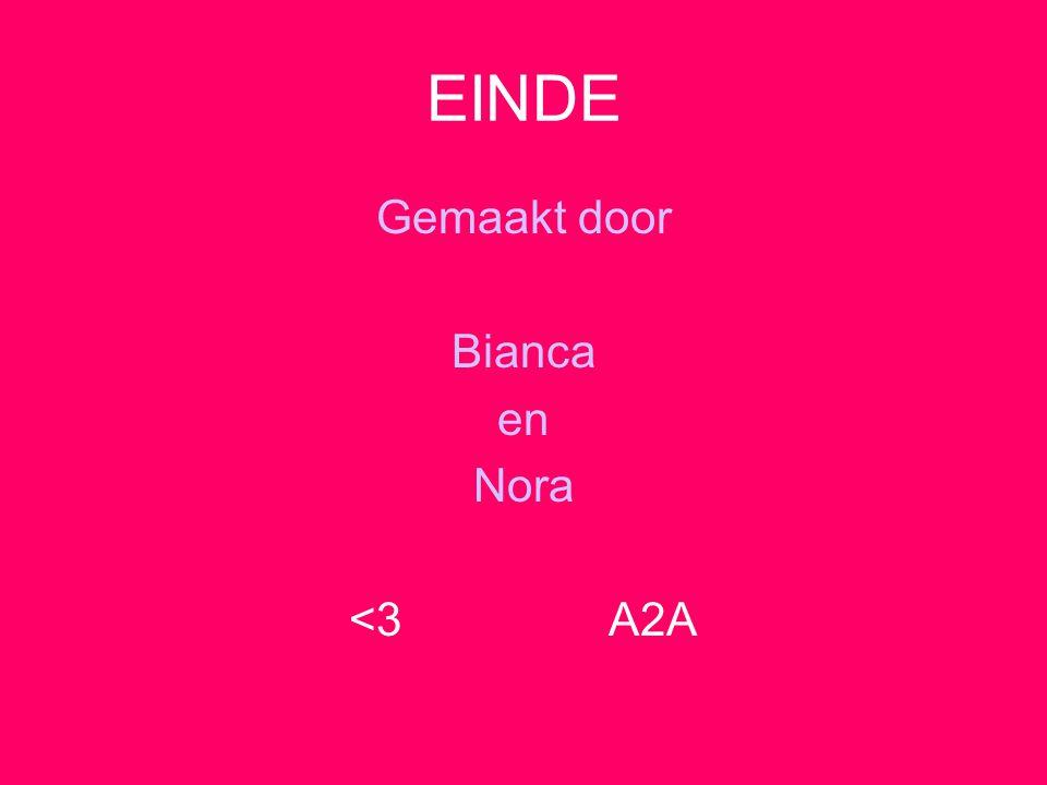 EINDE Gemaakt door Bianca en Nora <3 A2A