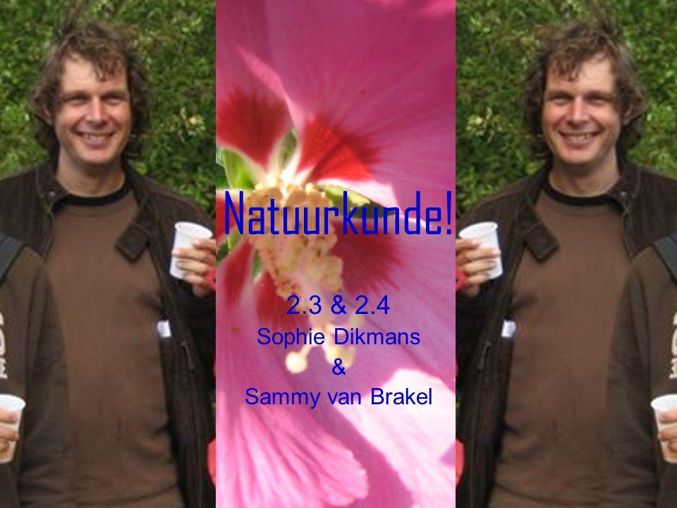 Natuurkunde! 2.3 & 2.4 Sophie Dikmans & Sammy van Brakel