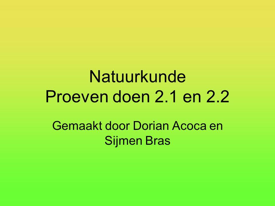 Natuurkunde Proeven doen 2.1 en 2.2 Gemaakt door Dorian Acoca en Sijmen Bras