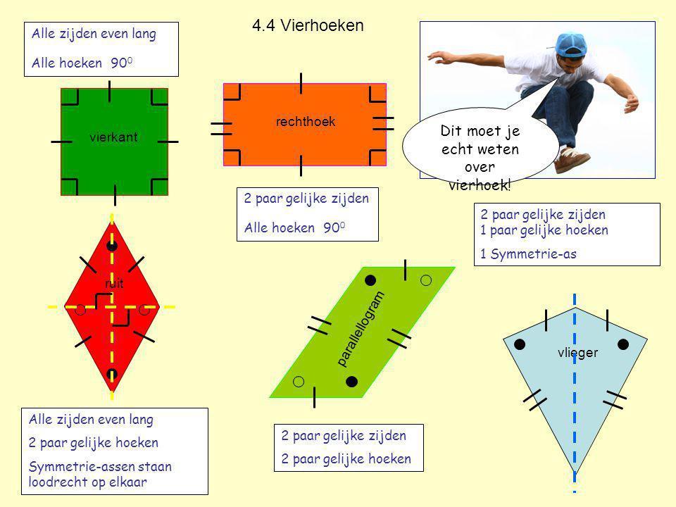 Dit moet je echt weten over vierhoek.